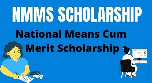 nms scholarship form online